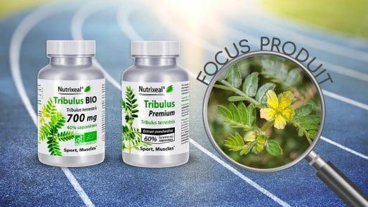 Focus produit sur les extraits de Tribulus terrestris Nutrixeal : version BIO et version premium.