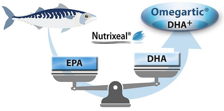 omegartic sport 1000 omega-3 epa dha Nutrixeal Sport Info
