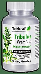 Tribulus terrestris Premium Nutrixeal contient une teneur exceptionnelle en actifs furostanol saponines).