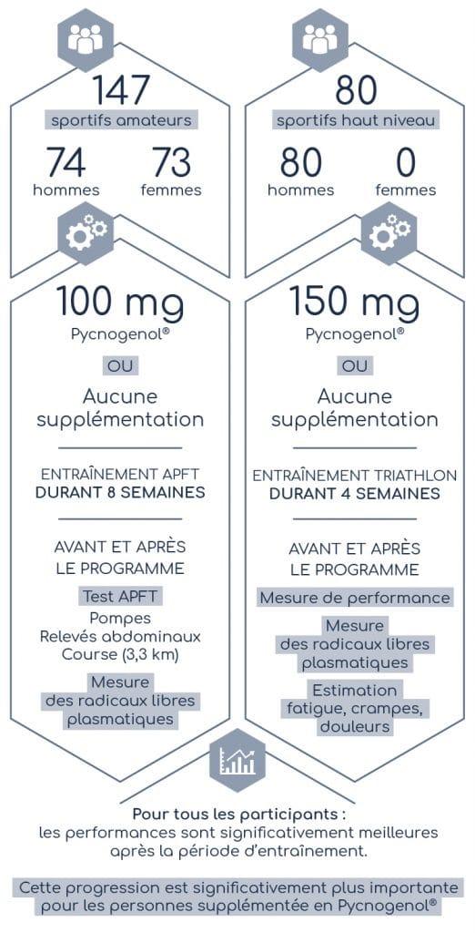 Résultats de l'étude sur la supplémentation en Pycnogenol chez les sportifs.